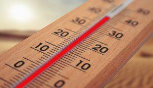 Summer temperature averages